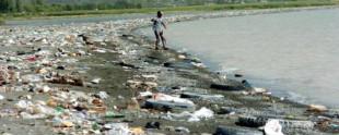 Van Gölü kirlilik